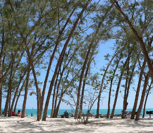 Key West Snorkel Spot Key West Marine Park