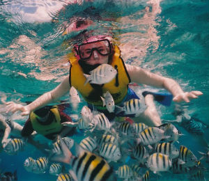 Don't Rent the Cheapest Snorkeling Equipment