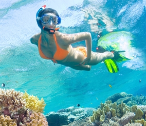 Key West Snorkeling Tips