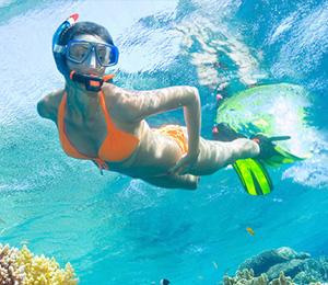Top Snorkeling Locations in Key West